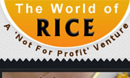 The word of rice